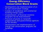 energy efficiency conservation block grants