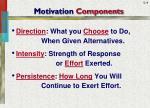 motivation components