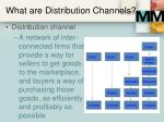 what are distribution channels