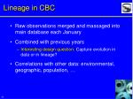 lineage in cbc