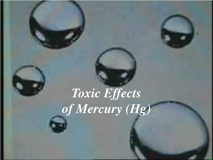 toxic effects of mercury hg n.