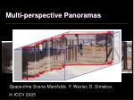 multi perspective panoramas1