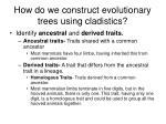 how do we construct evolutionary trees using cladistics