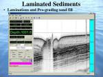 laminated sediments