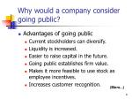 why would a company consider going public