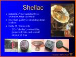 shellac1