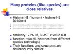 many proteins like species are close relatives