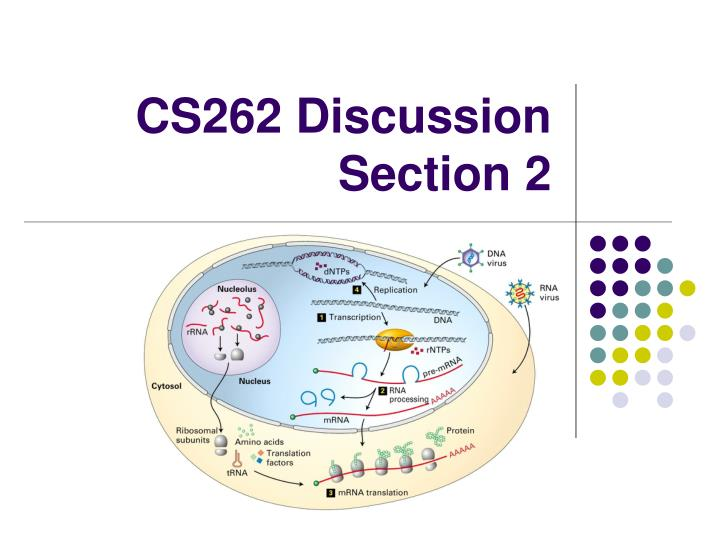 cs262 discussion section 2 n.