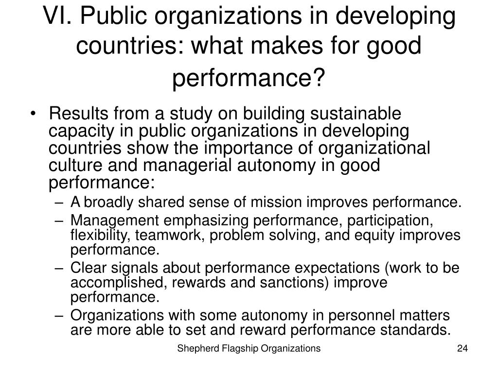 VI. Public organizations in developing countries: what makes for good performance?