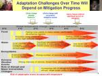 adaptation challenges over time will depend on mitigation progress