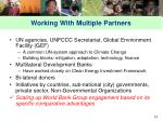 working with multiple partners