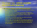 the longer view salmon recovery and restoration planning