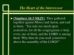 the heart of the intercessor5