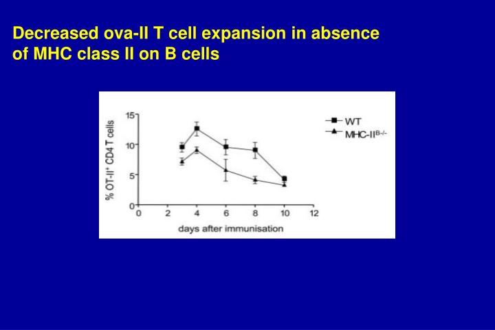 Decreased ova-II T cell expansion in absence