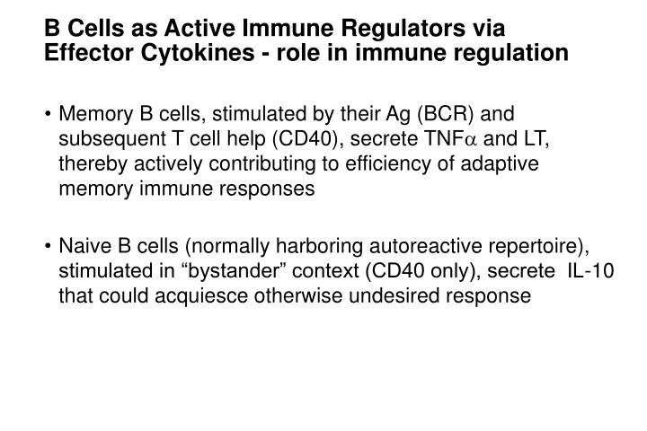 B Cells as Active Immune Regulators via
