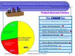 what factors contribute to project success