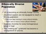 ethnically diverse population