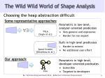 the wild wild world of shape analysis