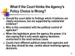 what if the court thinks the agency s policy choice is wrong