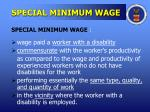 special minimum wage