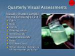 quarterly visual assessments1