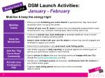 dsm launch activities january february