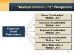 multiple bottom line perspective