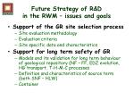 future strategy of r d in the rwm issues and goals