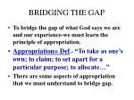 bridging the gap1