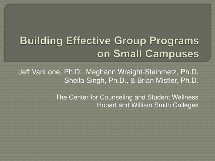 building effective group programs on small campuses n.