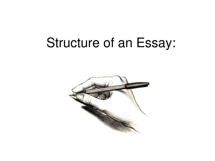 structure of an essay n.
