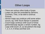 other loops