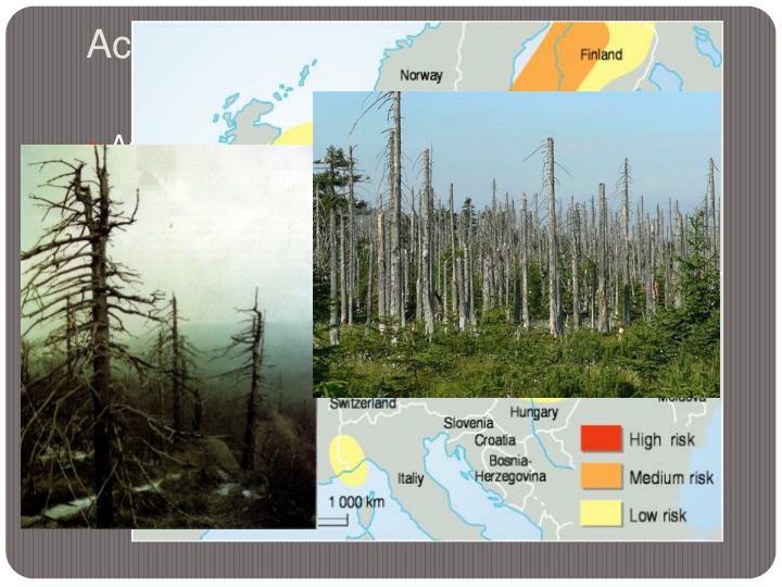 Acid Rain and Deforestation
