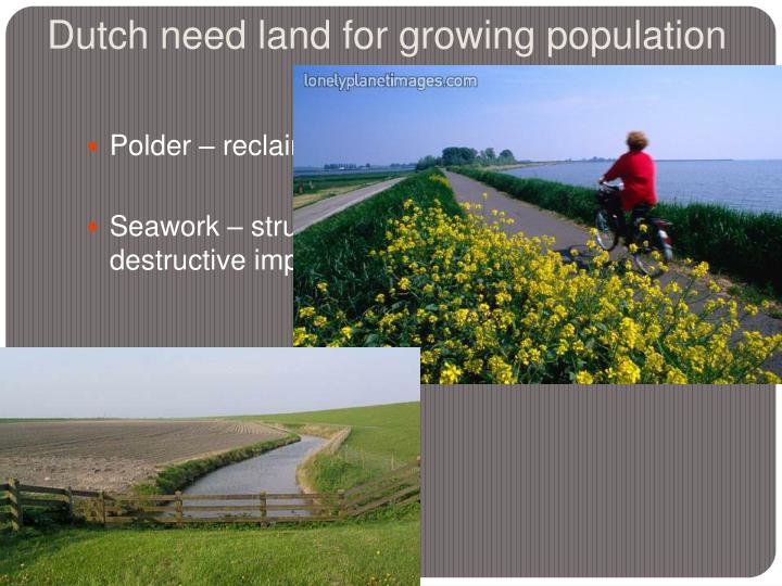 Dutch need land for growing population