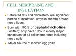 cell membrane and insulation