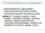 environment alzheimer s