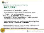 recent human trials continued bap pbt2