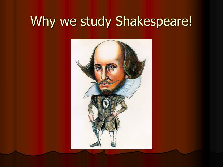 why we study shakespeare n.