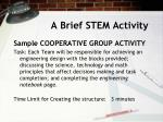 a brief stem activity