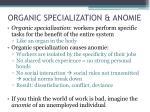 organic specialization anomie