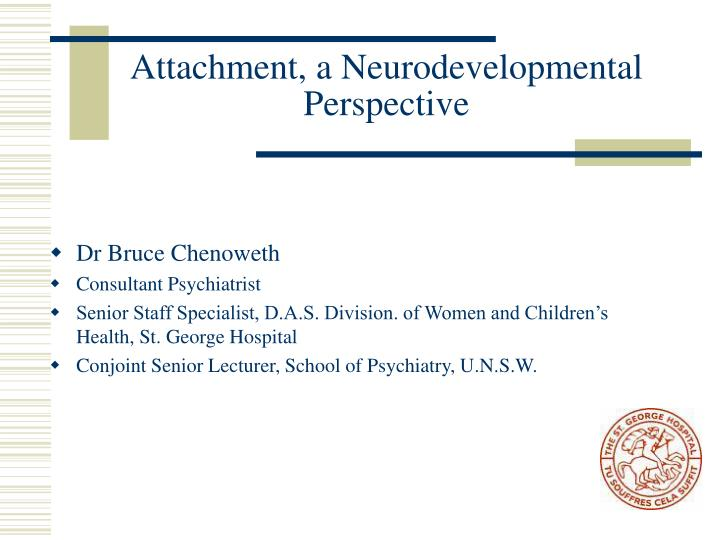 attachment a neurodevelopmental perspective n.