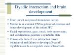 dyadic interaction and brain development