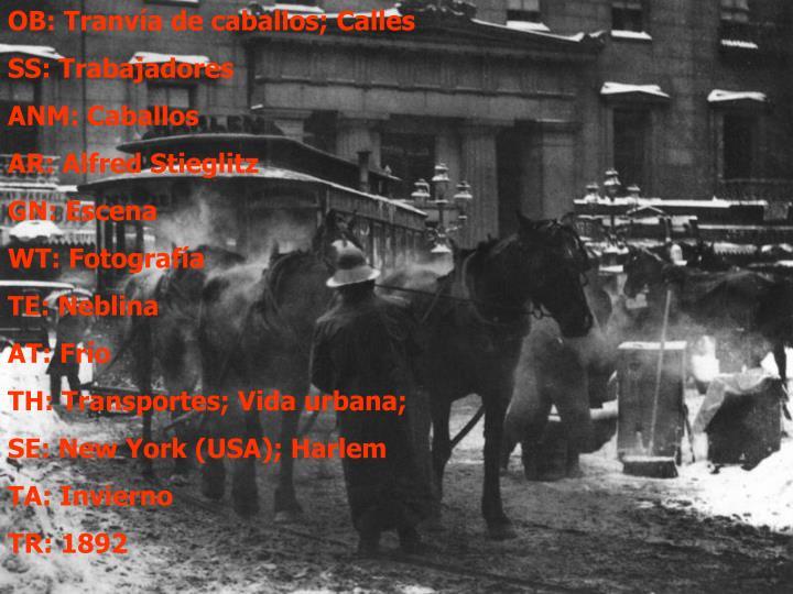 OB: Tranvía de caballos; Calles