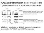 gabaergic transmission is not involved in the generation of cenos but is crucial for cgdps
