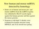 new human and mouse mirna detected by homology