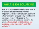 what is em solution
