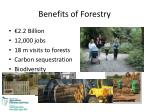 benefits of forestry