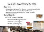 irelands processing sector