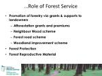 role of forest service1