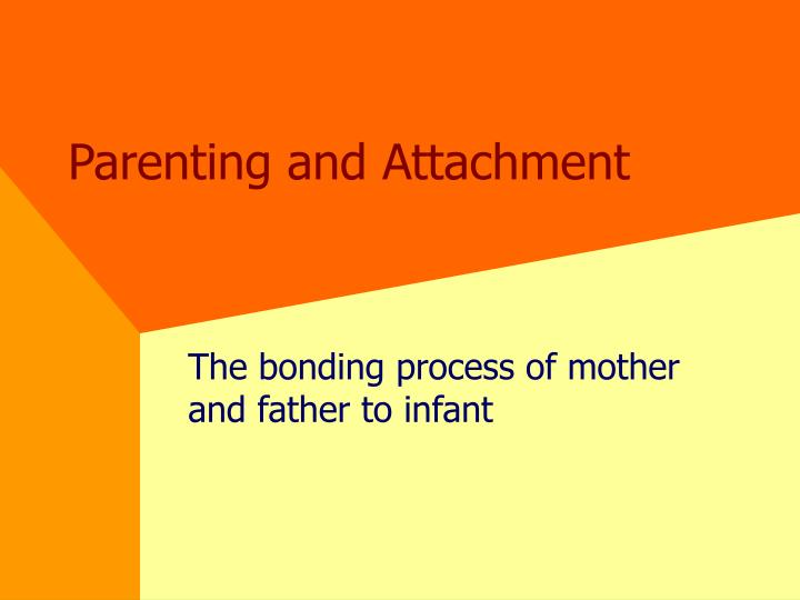 parenting and attachment n.
